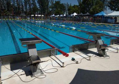 Trampolín de salida piscina olímpica